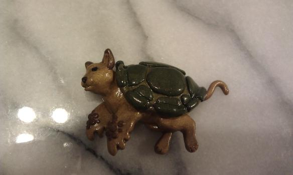 Cat-mera - Cat-turtle or Chelonicat